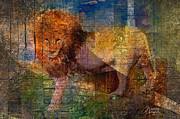Lions Mixed Media Prints - Lion Print by Arline Wagner