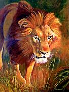 Lion Painting Posters - Lion at Sunset Poster by Michael Durst