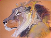 Adult Pastels Framed Prints - Lion Framed Print by Beryl Stewart