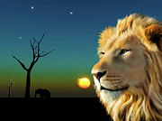 Lion Portrait Posters - Lion Blue Sunset Poster by Michael Greenaway