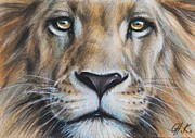 Christine Karron Metal Prints - Lion Metal Print by Christine Karron