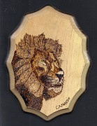 Lion Pyrography - Lion by Clarence Butch Martin
