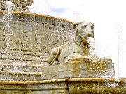 Stephanie Olsavsky - Lion Fountain