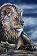 Lion Paintings - Lion by Ilse Kleyn
