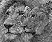 Pair Mixed Media Framed Prints - Lion King And Queen Framed Print by Larry Linton