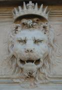 Lion Gargoyle Prints - Lion King II Pitti Palace Florence Italy Print by Sharon Blanchard