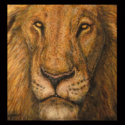 Animal Art Framed Prints - Lion King Framed Print by John Shook