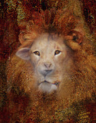 Wild Animal Framed Prints - Lion Lamb Face Framed Print by Constance Woods