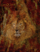 Lions And Lambs Art - Lion of Judah by Constance Woods