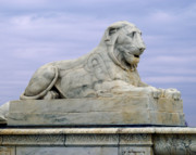 Michael Peychich - Lion of Scott
