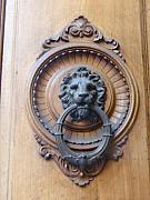 Door Knockers And Handles - Lion of the Sun by Edan Chapman