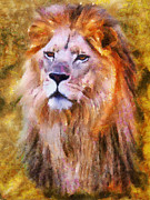 Contemporary Oil Paintings - Lion Portrait II by Jai Johnson