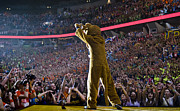 Bryce Jordan Center Metal Prints - Lion shows THON Diamond Metal Print by Michael Misciagno