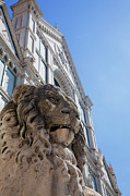 Croce Prints - Lion Statue In Front Of Santa Croce Church Print by Martin Child