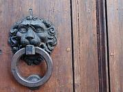 Door Knockers And Handles - Lion with Dummy by Edan Chapman