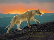 Sunset Framed Prints - Lioness Arising Framed Print by Constance Woods