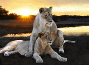 Lioness Arising Framed Prints - Lioness With Her Young Framed Print by Constance Woods