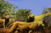 Lion Digital Art - Lions Den by Bill Cannon