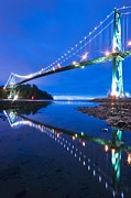Lions Gate Bridge Prints - Lions Gate Bridge, Vancouver, Canada Print by David Nunuk