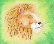 Lion Drawings Acrylic Prints - Lions Head Acrylic Print by Mark Schutter