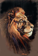 Big Cat Pastels Posters - Lions Head Poster by Samantha Grimes