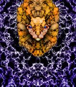 Lion's Roar Print by Christopher Gaston
