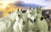 Portaits Digital Art - Lipizzans by Tom Schmidt