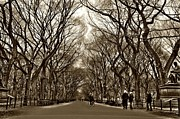 Central Park Photos - Literary Walk by Randy Aveille