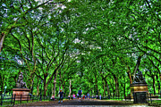 Central Park Photos - Literary Walk Too by Randy Aveille