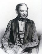 Darwin Photos - Lithograph Of Charles Darwin Aged 40 by National Library Of Medicine