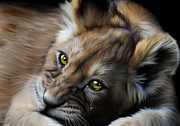 Lion Art - Little Baby Lost by Julie L Hoddinott