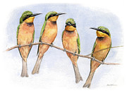 Exotic Bird Paintings - Little Bee-Eaters by Chris Pendleton