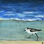 Debbie Brown Prints - Little bird at the beach Print by Debbie Brown