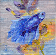 Exotic Fish Paintings - Little Blue Betta Fish by Brenda Thour