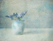 Grape Hyacinths Posters - Little blue flowers Poster by Ellen Van Deelen