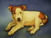 Adorable Pastels - Little Bob - Jack Russell puppy by Lucy Deane
