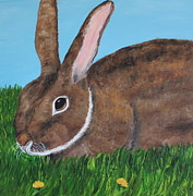 Bunny Paintings - Little Brown Bunny by Christie Minalga