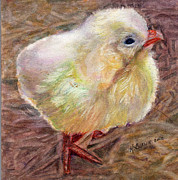 Barnyard Originals - Little Chick by Katherine  Berlin
