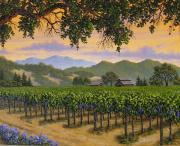 Napa Valley Vineyard Paintings - Little Country Vineyard by Patrick ORourke