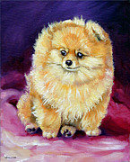 Pomeranian Framed Prints - Little Dude - Pomeranian Framed Print by Lyn Cook
