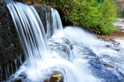 Mountain Stream Photo Posters - Little Elbow Waterfall and Williams River Poster by Thomas R Fletcher