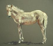 Horse Pastels Originals - Little Girl by Sabina Haas