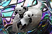 Distortion Framed Prints - Little Glass Pandas 16 Framed Print by Sarah Loft