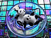 Squares Art - Little Glass Pandas 23 by Sarah Loft