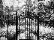 Savannah Infrared Photography Prints - Little Gracie Print by Jeff Holbrook