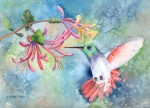 Floral Hummingbird Posters - Little Hummingbird Poster by Arline Wagner