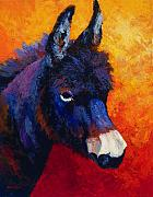 Donkey Painting Metal Prints - Little Jack - Burro Metal Print by Marion Rose
