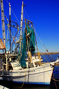 Shrimp Boat Prints - Little Jennifer Print by Susanne Van Hulst