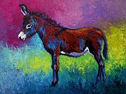 Donkey Painting Metal Prints - Little Jenny - Burro Metal Print by Marion Rose