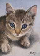 Noewi Framed Prints - Little Kitty Framed Print by Jindra Noewi